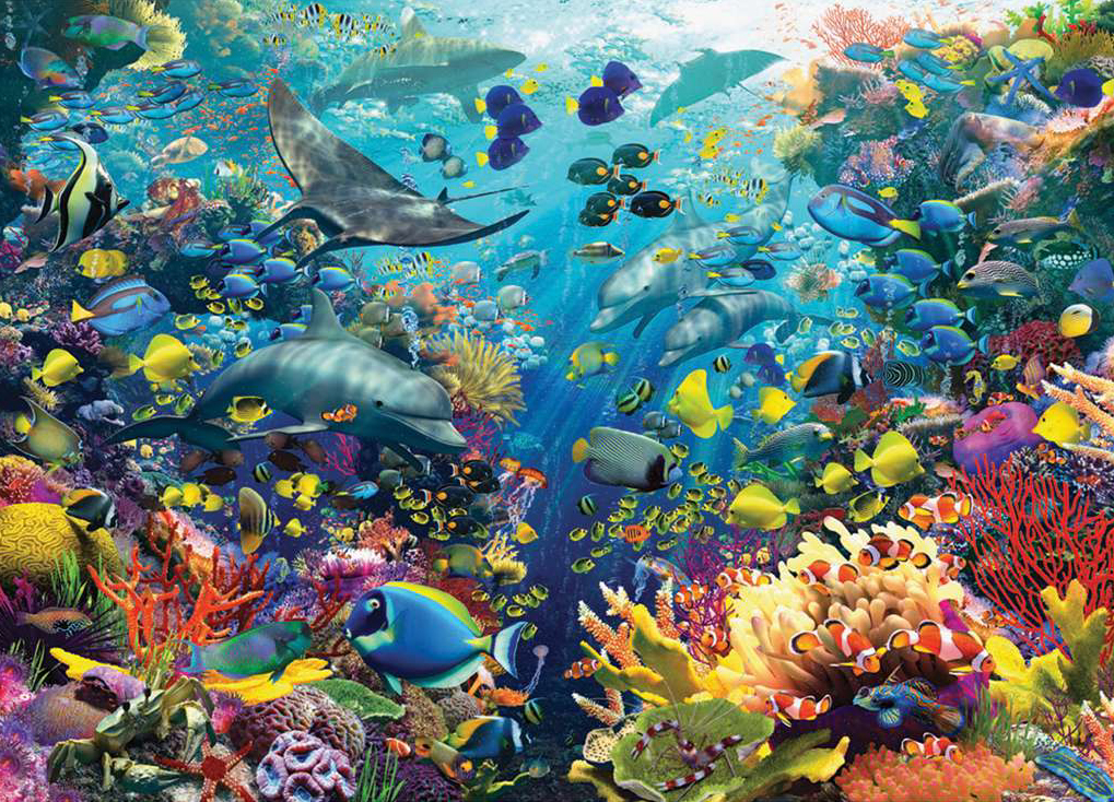underwater paradise 9000 pieces jigsaw puzzle by ravensburger artist david penfound beautiful brilli underwater-paradise-9000