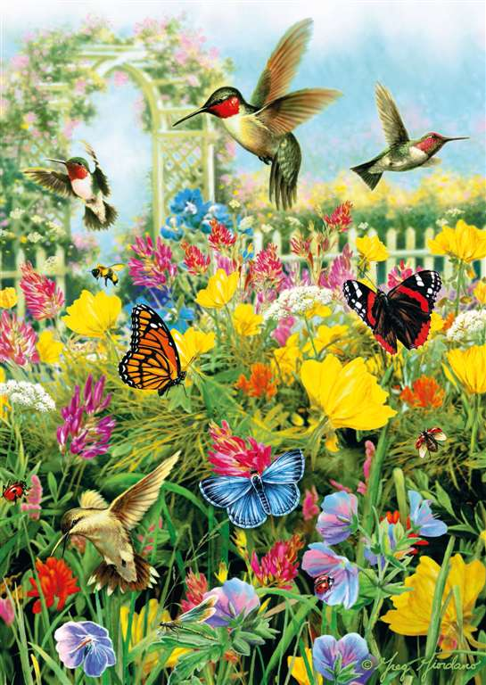 Summer in the Meadow hummingbirds and butterflies ravensburger 1000 piece jigsaw puzzel # 190591 summer-in-the-meadow