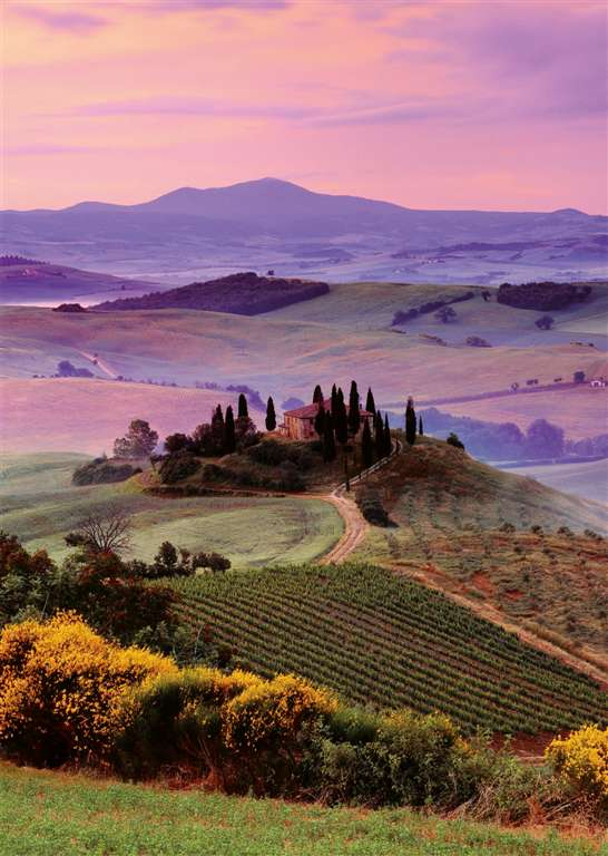 Ravensberger 1000 Piece Jigsaw Puzzle of Tuscan Flair # 190867 tuscan-flair