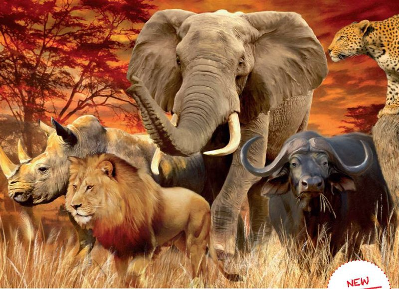 ravensburger jigsaw puzzle, 1000 pieces, painting of the big five beasts of the african savannah by  the-big-five