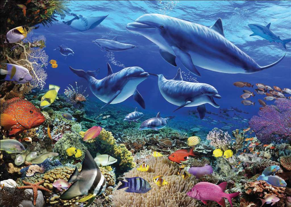 Family of Dolphins Artistic Illustration 1000 Piece Jigsaw Puzzle by Ravensburger Puzzles Germany family-dolphins