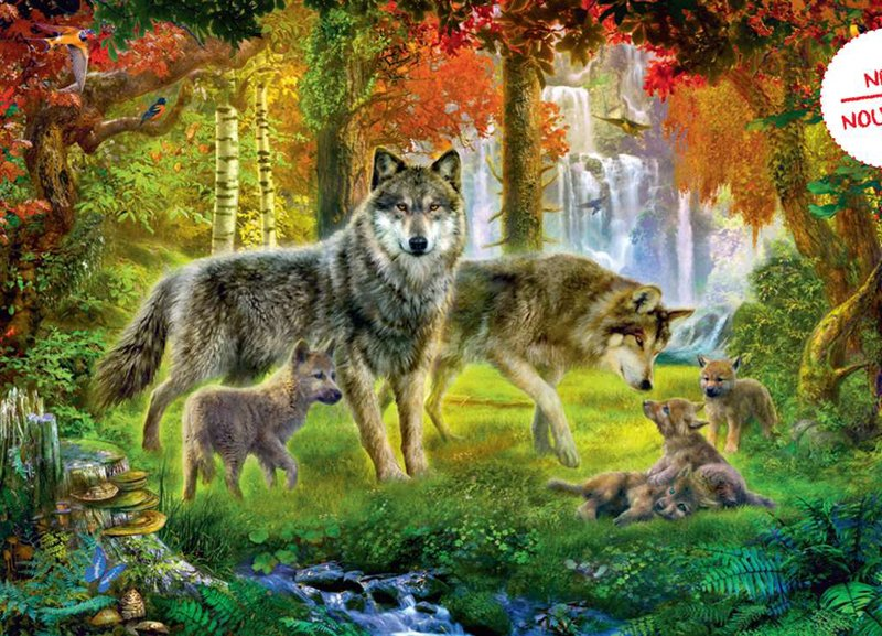 Ravesburger JigsawPuzzle 1000 pieces Summer Wolves meiklejohn beautiful colors 192953 summer-wolves-ravensburger