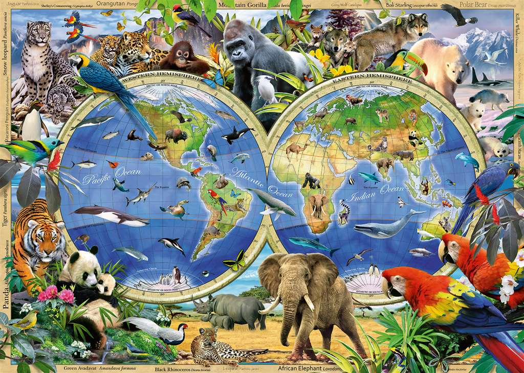 World of Wildlife by howard robinson map 1000 Pieces Jigsaw Puzzle by Ravensburger Puzles Germany #  world-wildlife