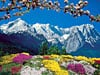 Garmisch Patenkirchen, Germany Alpine Landscape 1500 piece jigsaw puzzle manufactured by Ravensburge Puzzle