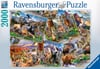 postcard-parks,National Parks Postcards 2000 Pieces made by Ravensburger item # 166978