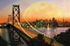 san francisco at night 3000 piece jigsaw puzzle by ravensburger soft click technology premium puzzel