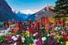 flowery-mountains,Flowery Mountains Ravensburger 3000 Piece Jigsaw planet Puzzle michael wheatley photo