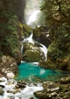 mackay-falls,Mackay Falls, New Zealand Ravensburger 1000 Panoramic Piece Jigsaw Jungle Puzzle Cezary Kasprzyk pho