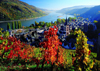 on the river rhine photo german landscape jigsaw puzzle ravensburger puzzle