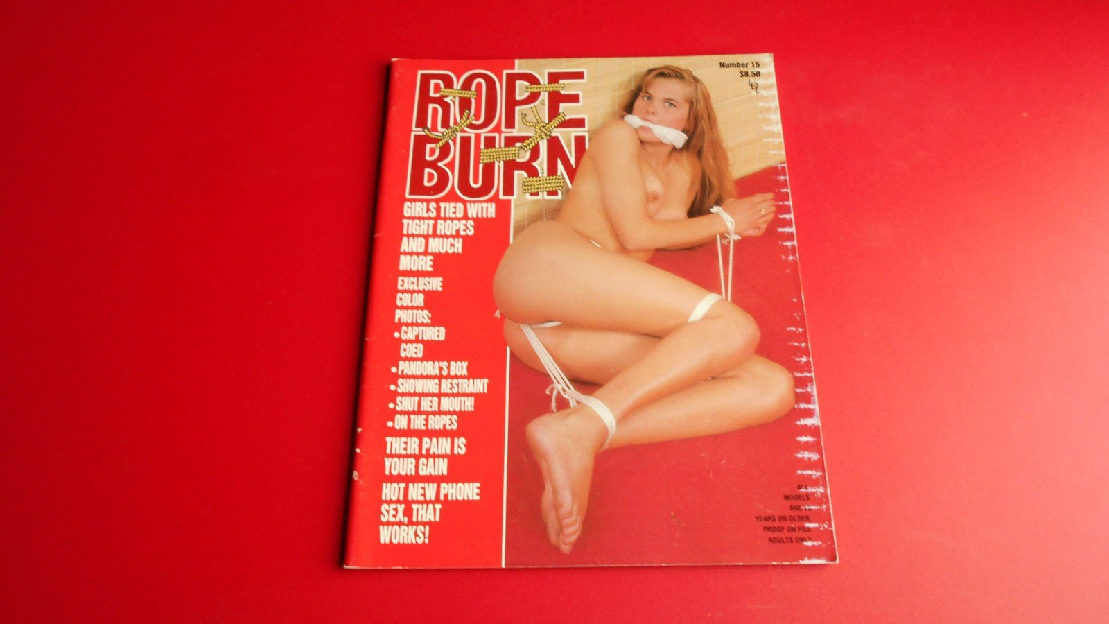 Rope Burn # 15 magazine back issue
