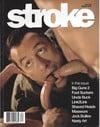 Stroke Vol. 18 # 2 magazine back issue