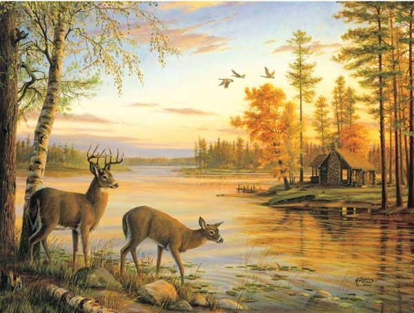Quiet Evening painted by Mary Pettis 1000 piece jigsaw puzzle manufactured by suns out quiet-evening-sunsout