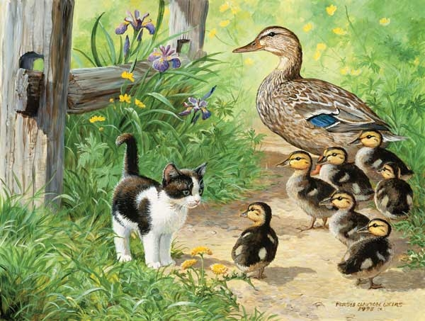 Duck Inspector painted by Persis Clayton Weirs 500 piece jigsaw puzzle manufactured by suns out duck-inspector-sunsout