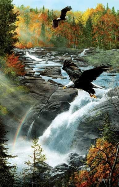 Eagles at the Waterfall painted by Kevin Daniels 1000 piece jigsaw puzzle manufactured by suns out eagles-at-the-waterfall-sunsout