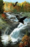 Eagles at the Waterfall painted by Kevin Daniels 1000 piece jigsaw puzzle manufactured by suns out Puzzle