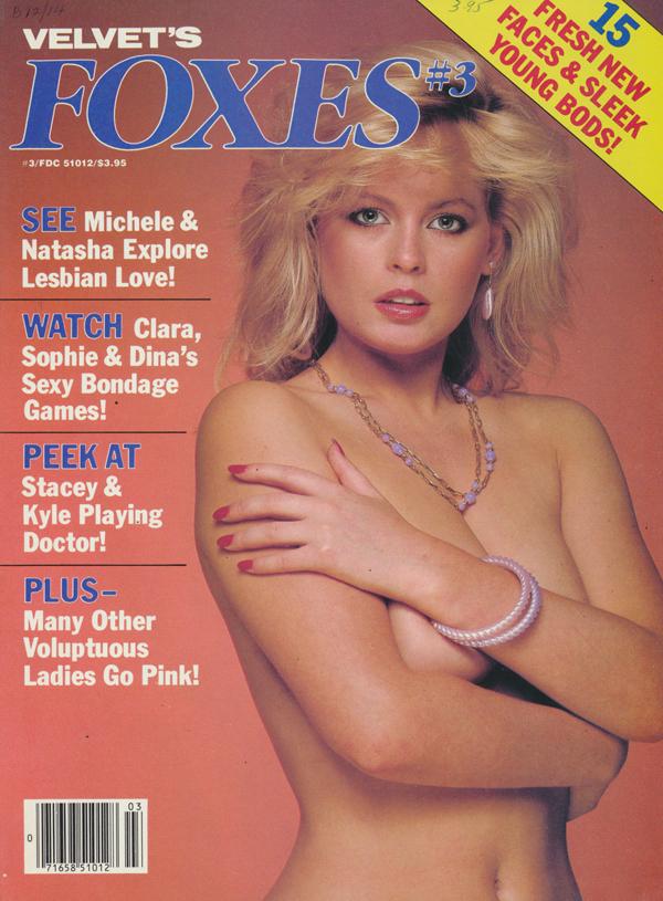 Velvet Foxes # 3 thumbnail