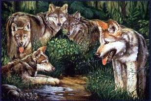 jigsaw puzzle of wolf family, wolves in springtime, wrebbit perfalock 1000 pieces wolvesinspringtime