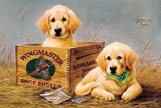 2djigsaw puzzle by wrebbit, wingmaster, two cute dogs puzzle perfalock wingmaster