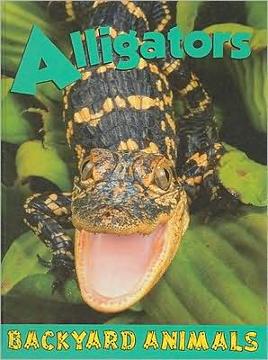 Alligators book written by Heather C. Hudak