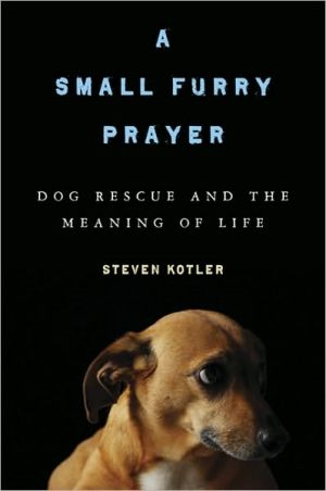 A Small Furry Prayer: Dog Rescue and the Meaning of Life book written by Steven Kotler