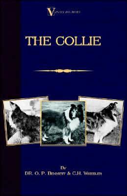Collie book written by O. P. Bennett