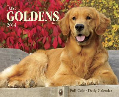 Just Goldens Box Calendar book written by Not Available (NA)