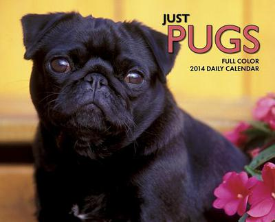 Just Pugs Box Calendar book written by Not Available (NA)
