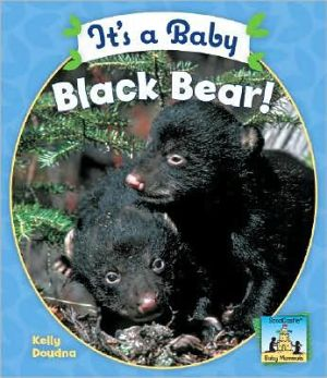 It's a Baby Black Bear! (Baby Mammals Series) written by Kelly Doudna