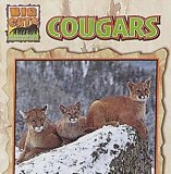 Cougars (Big Cat Series) book written by Victor Gentle