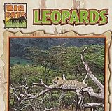 Leopards book written by Victor Gentle