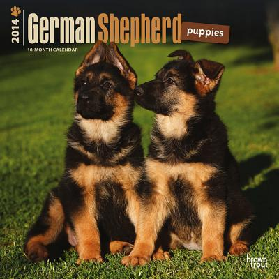 German Shepherd Puppies 2014 18-Month Calendar book written by Browntrout Publishers