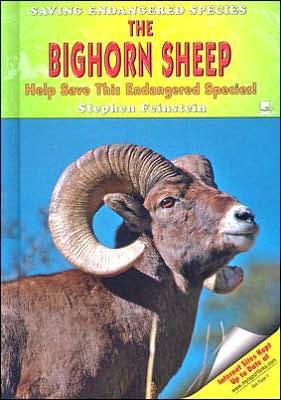 Bighorn Sheep: Help Save This Endangered Species! book written by Stephen Feinstein