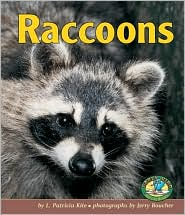 Raccoons (Early Bird Nature Books Series) written by L. Patricia Kite