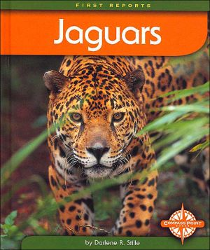 Jaguars (First Reports) book written by Darlene R. Stille
