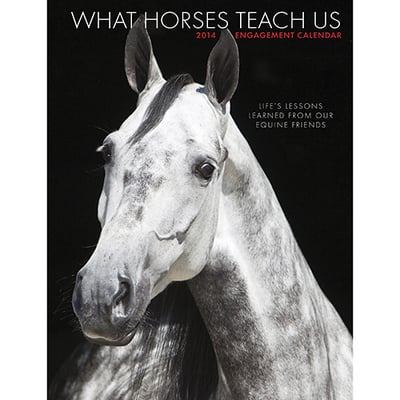What Horses Teach Us Engagement Calendar book written by Not Available (NA)