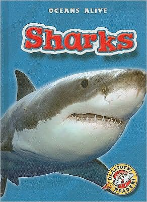 Sharks book written by Colleen Sexton