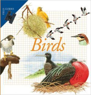 Birds book written by Maria Angeles Julivert