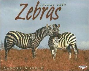 Zebras book written by Sandra Markle