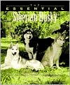 The Essential Siberian Husky book written by Howell Book House