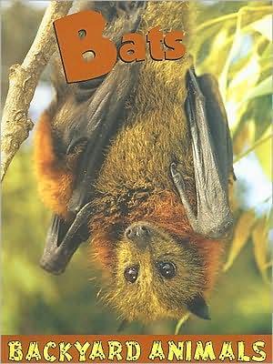Bats book written by Leia Tait