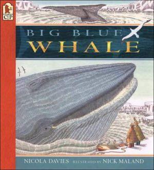 Big Blue Whale written by Nicola Davies