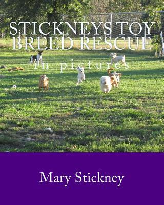 Stickneys Toy Breed Rescue in Pictures book written by Mary Stickney