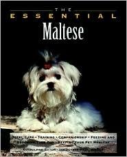 The Essential Maltese book written by Ian Dunbar