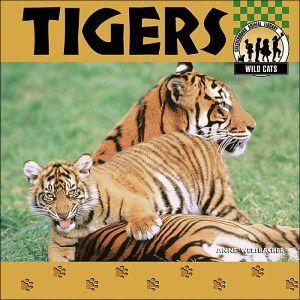 Tigers book written by Anne Welsbacher