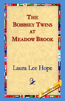 The Bobbsey Twins at Meadow Brook book written by Laura Lee Hope