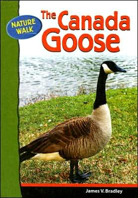 Canada Goose book written by James V. Bradley