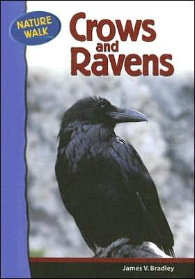 Crows and Ravens book written by James V. Bradley
