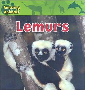 Lemurs book written by Karen Baicker