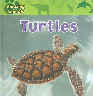 Turtles book written by Christina Wilsdon