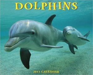2011 Dolphins Wall Calendar book written by Willow Creek Press, Incorporated